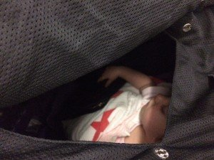 CoziGo bassinet cover review, Fly babee