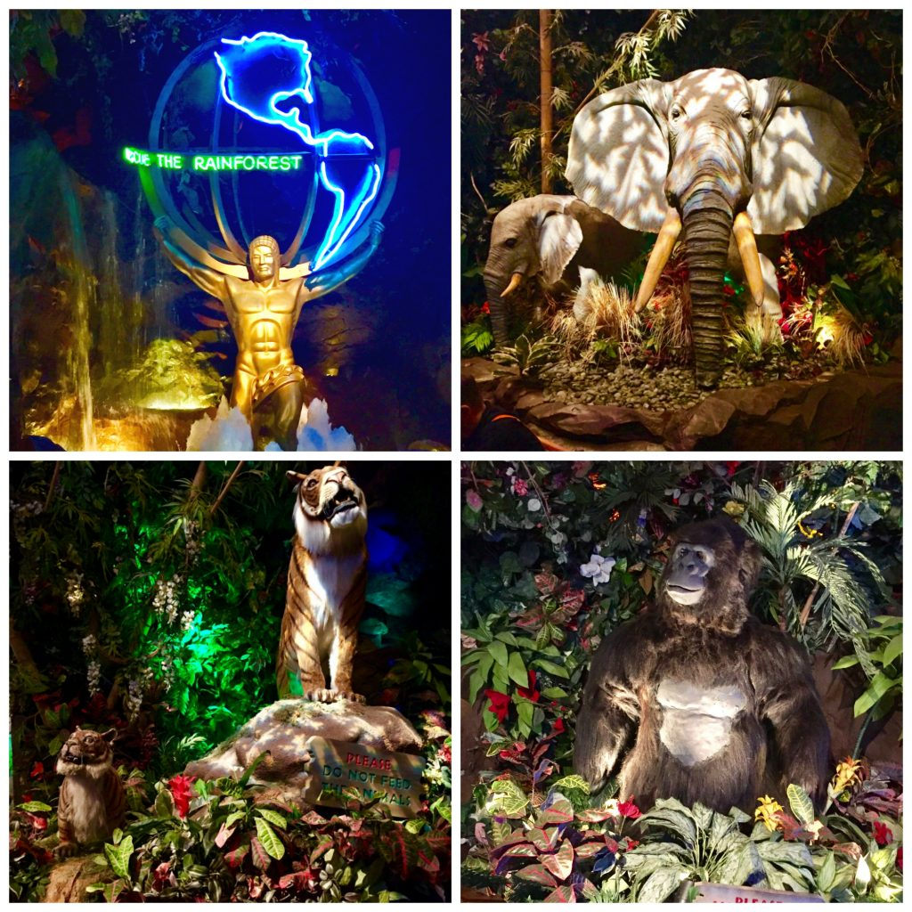San Francisco With Kids. San Francisco With Kids: Kid Friendly Attractions in San Francisco for 2017. Up to date indoor and outdoor activities for children of all ages. rainforest cafe