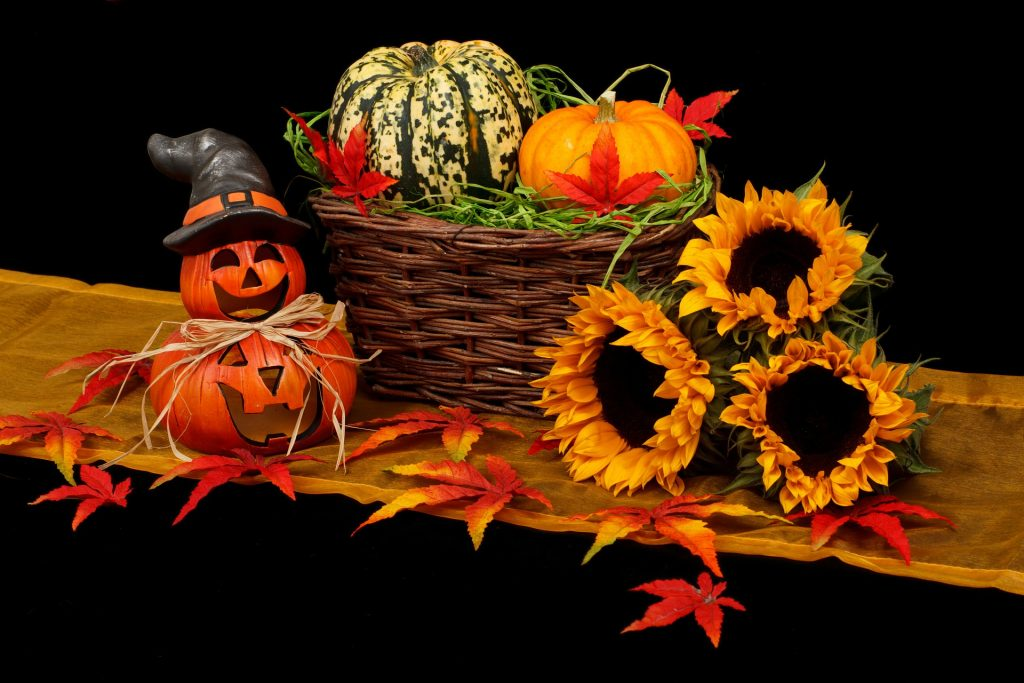 Halloween Activities in Cambridgeshire, Lincolnshire, Northamptonshire and Rutland. Half term 2017