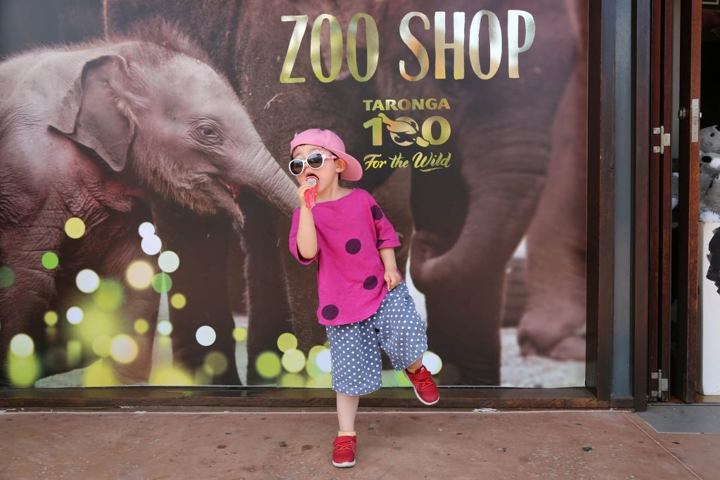 Things To Do In Sydney With Kids, taronga zoo