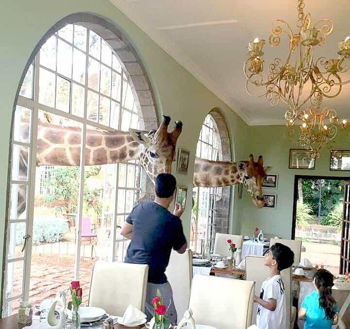 Giraffe manor, nairobi with kids, luxury family travel