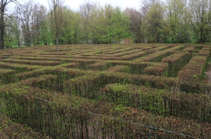 Things to Do in Wroclaw With Kids, the maze