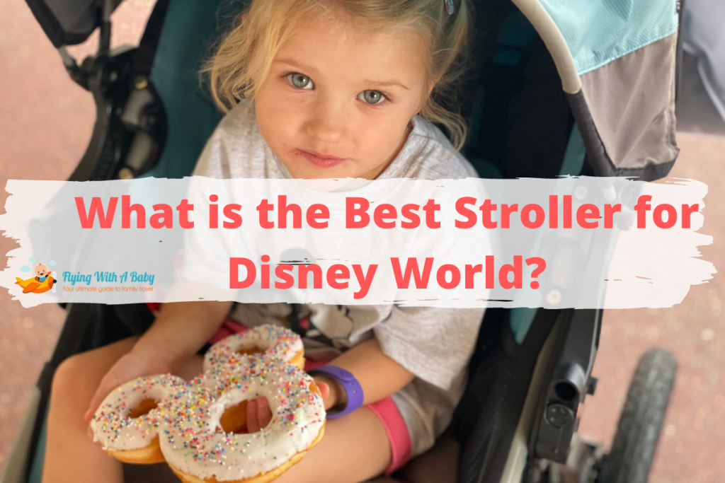 what is the best stroller for disney world