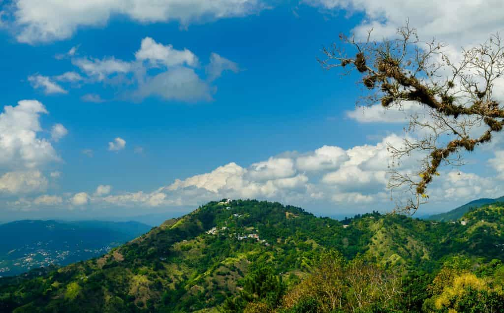 View of Hollywell, Things to do in Kingston Jamaica with Kids