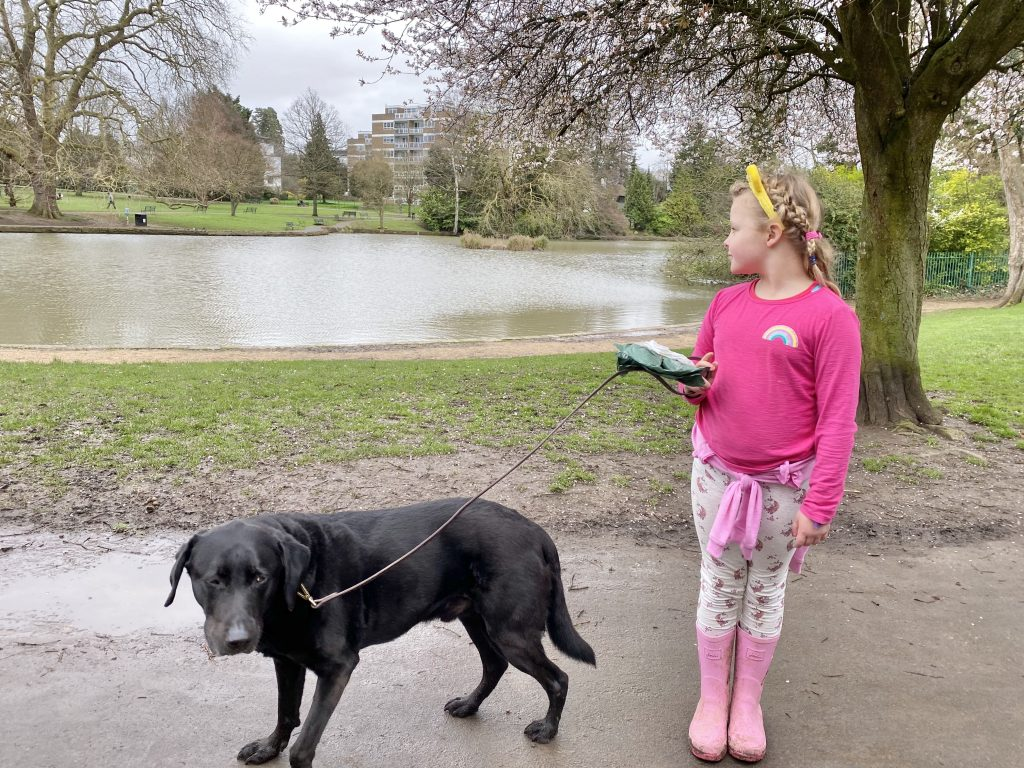 pittville park with a dog