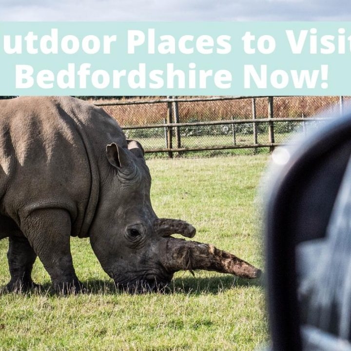 7 outdoor places to visit in Bedfordshire now! Discover things to do in Bedfordshire with kids which are open. Current details including toilet facilities.