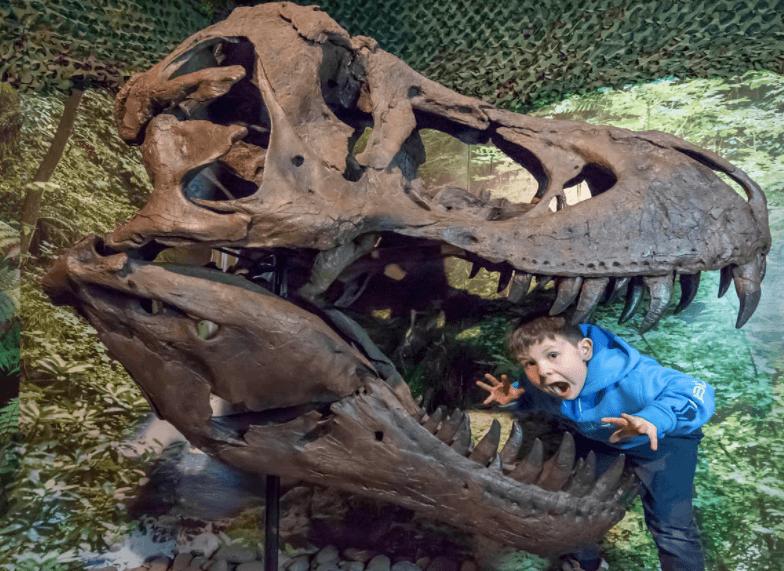 Image courtesy of Dinosaur World, Torquay, Dinosaur Days Out