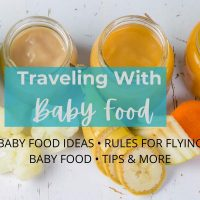 traveling with baby food cover image